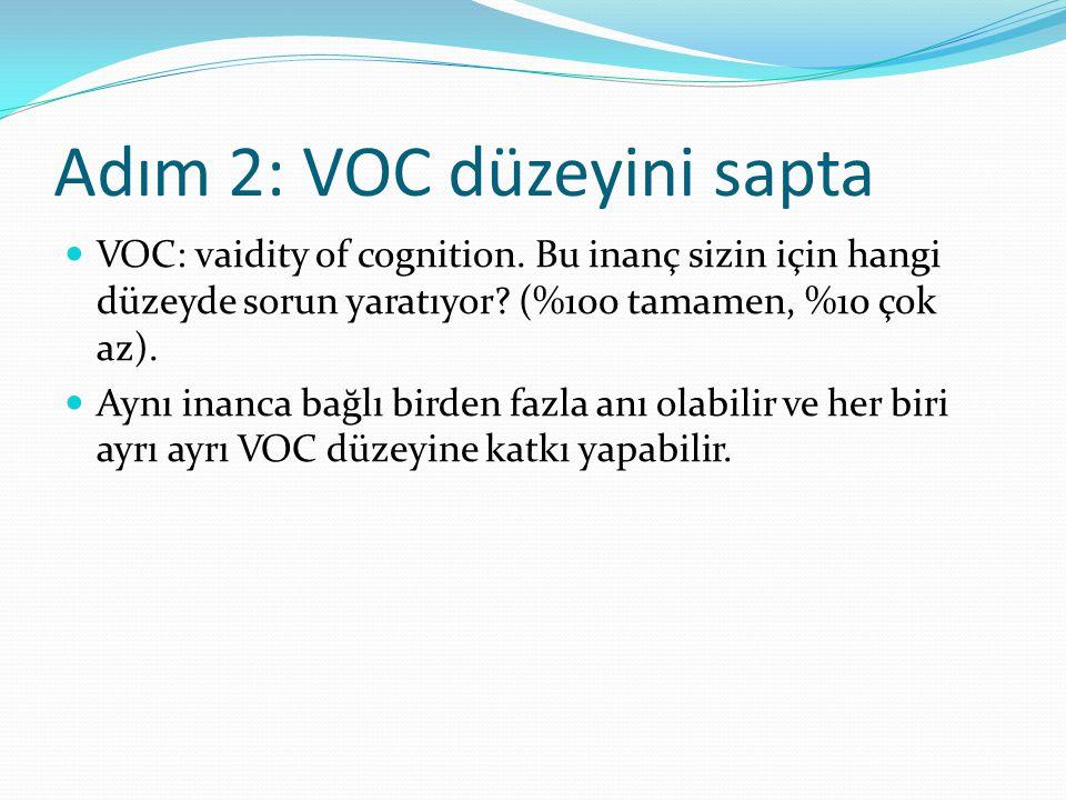 Adım 2: VOC düzeyini sapta