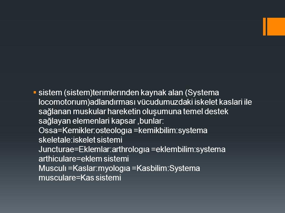 sistem (sistem)terımlerınden kaynak alan (Systema locomotorıum)adlandırması vücudumuzdaki iskelet kaslari ile sağlanan muskular hareketin oluşumuna temel destek sağlayan elemenlari kapsar ,bunlar: Ossa=Kemikler:osteologıa =kemikbilim:systema skeletale:iskelet sistemi Juncturae=Eklemlar:arthrologıa =eklembilim:systema arthiculare=eklem sistemi Musculı =Kaslar:myologıa =Kasbilim:Systema musculare=Kas sistemi