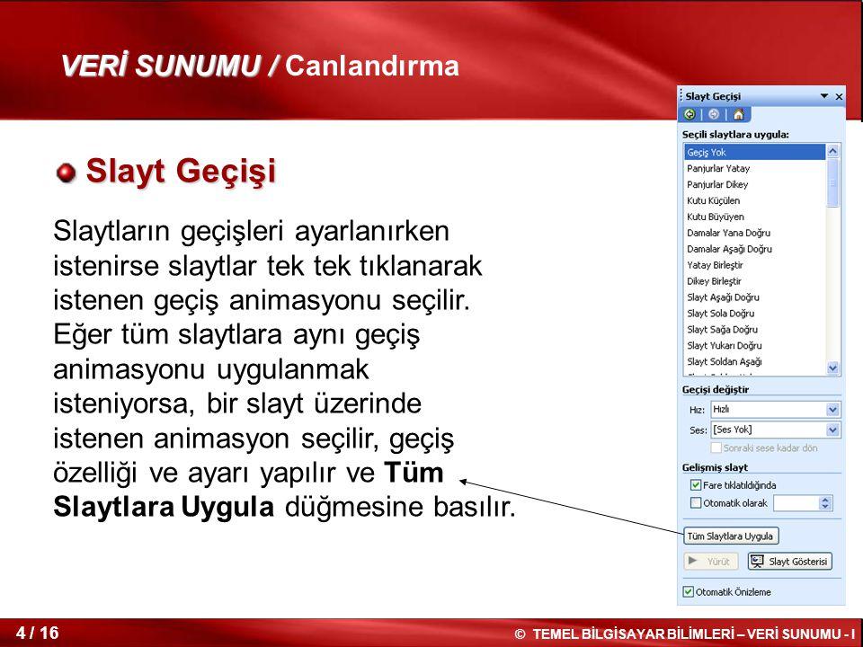 Slayt Geçişi VERİ SUNUMU / Canlandırma