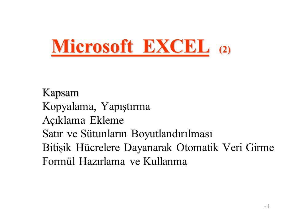 Microsoft EXCEL (2)