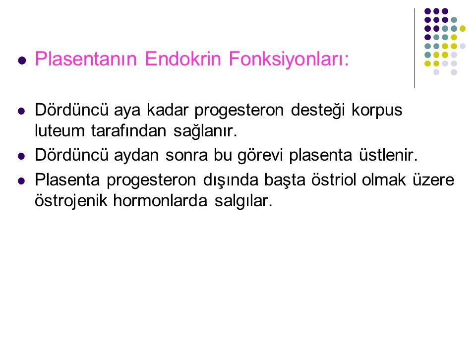 Plasentanın Endokrin Fonksiyonları: