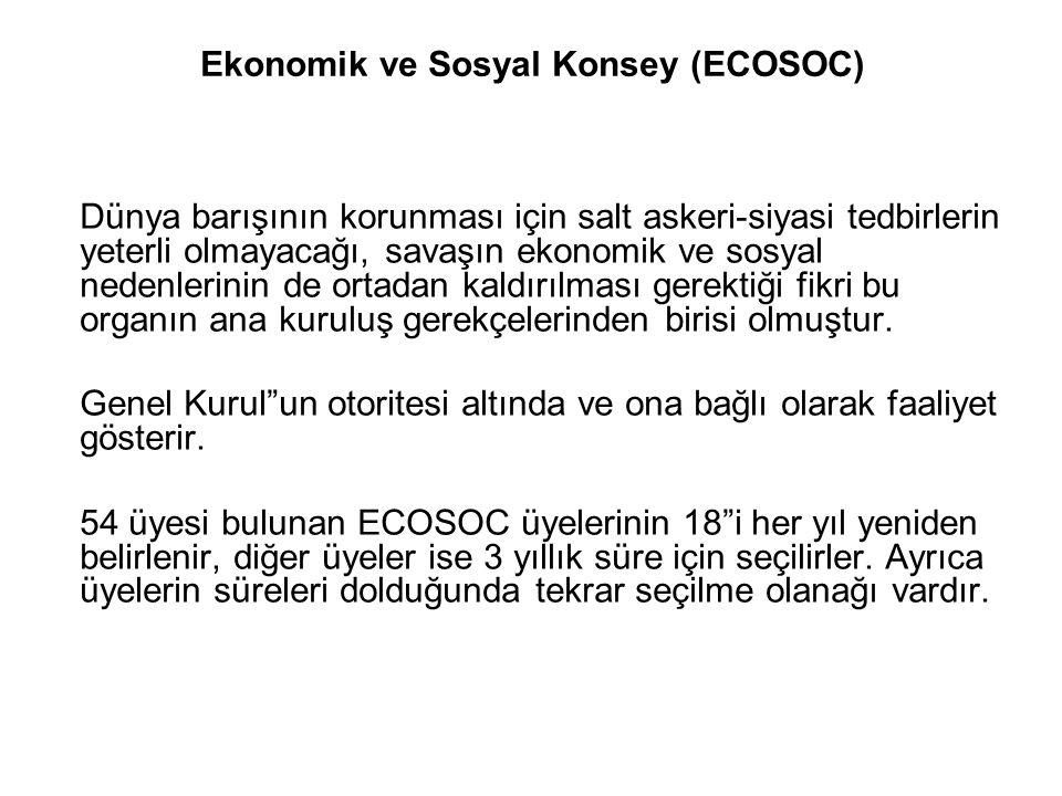 Ekonomik ve Sosyal Konsey (ECOSOC)