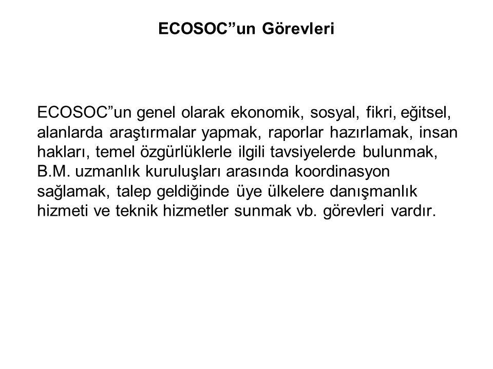 ECOSOC un Görevleri