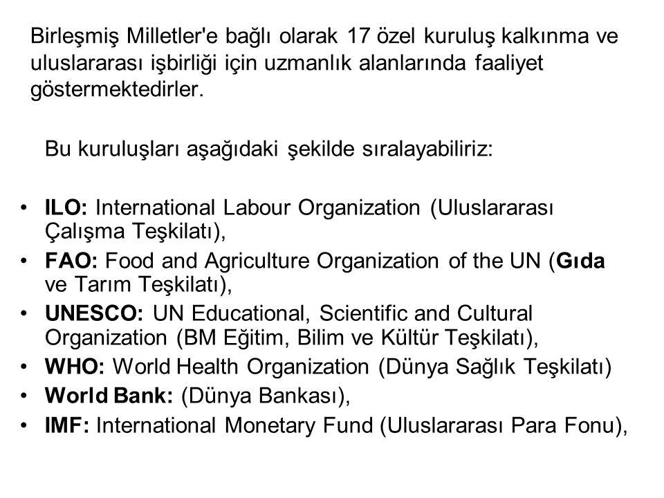Birleşmiş Milletler e bağlı olarak 17 özel kuruluş kalkınma ve uluslararası işbirliği için uzmanlık alanlarında faaliyet göstermektedirler.