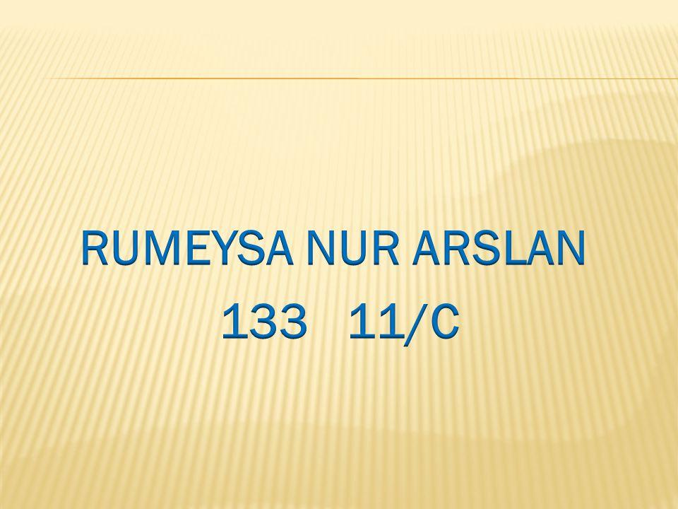 RUMEYSA NUR ARSLAN 133 11/C