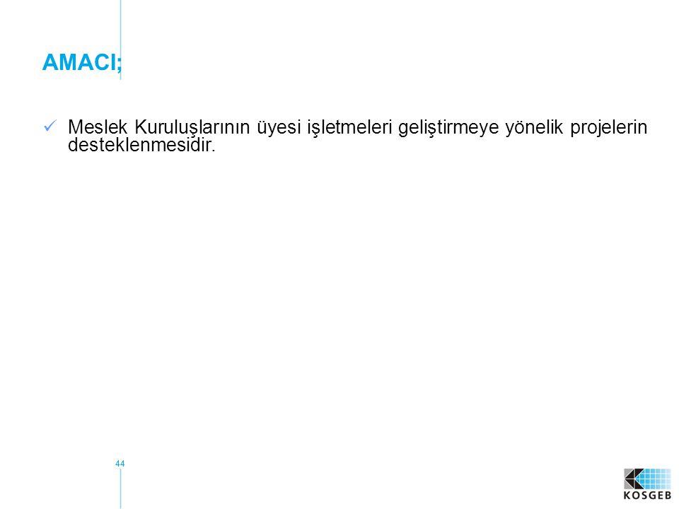 AMACI; Meslek Kuruluşlarının üyesi işletmeleri geliştirmeye yönelik projelerin desteklenmesidir.