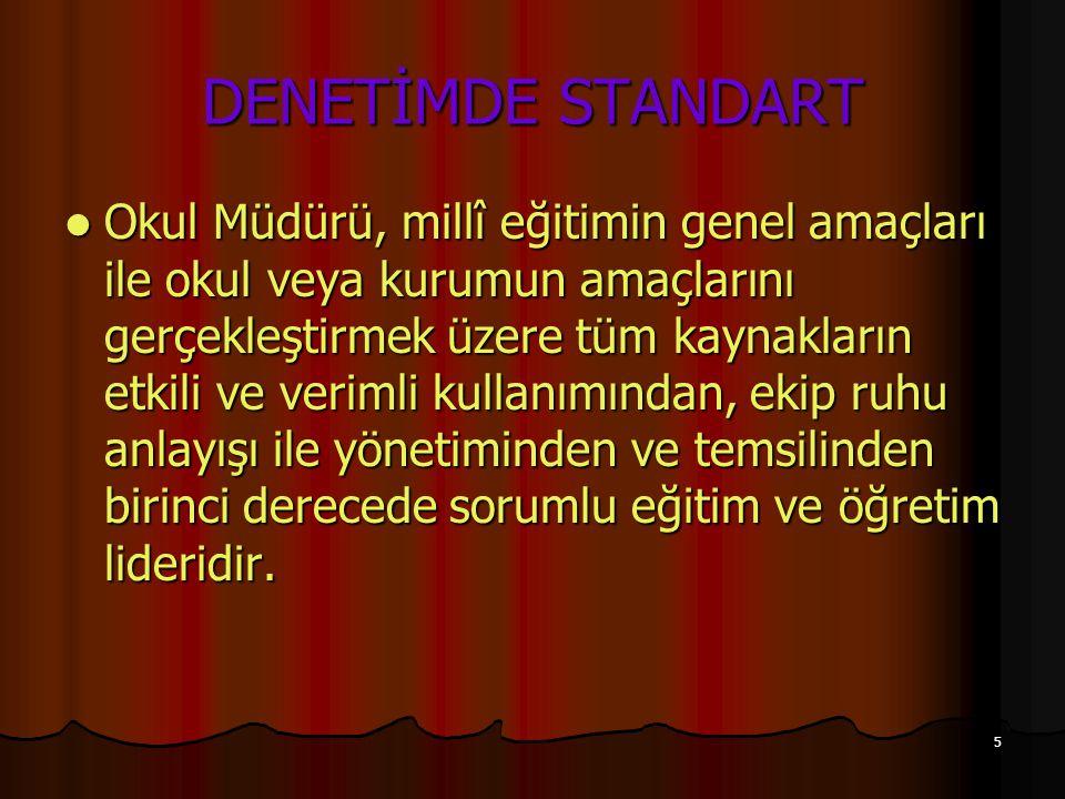 DENETİMDE STANDART