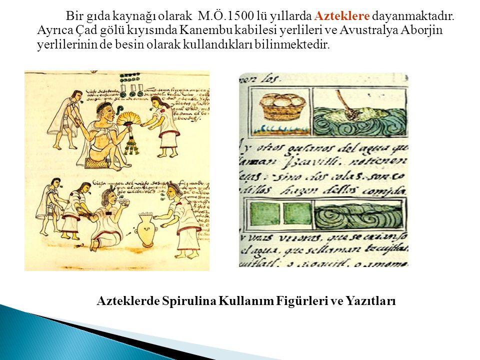 Bir gıda kaynağı olarak M. Ö. 1500 lü yıllarda Azteklere dayanmaktadır