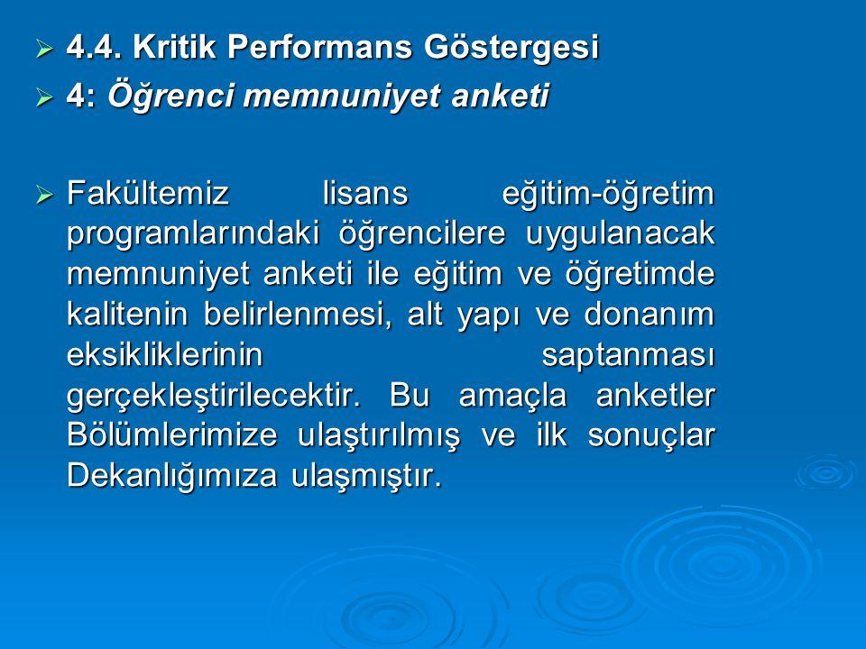 4.4. Kritik Performans Göstergesi
