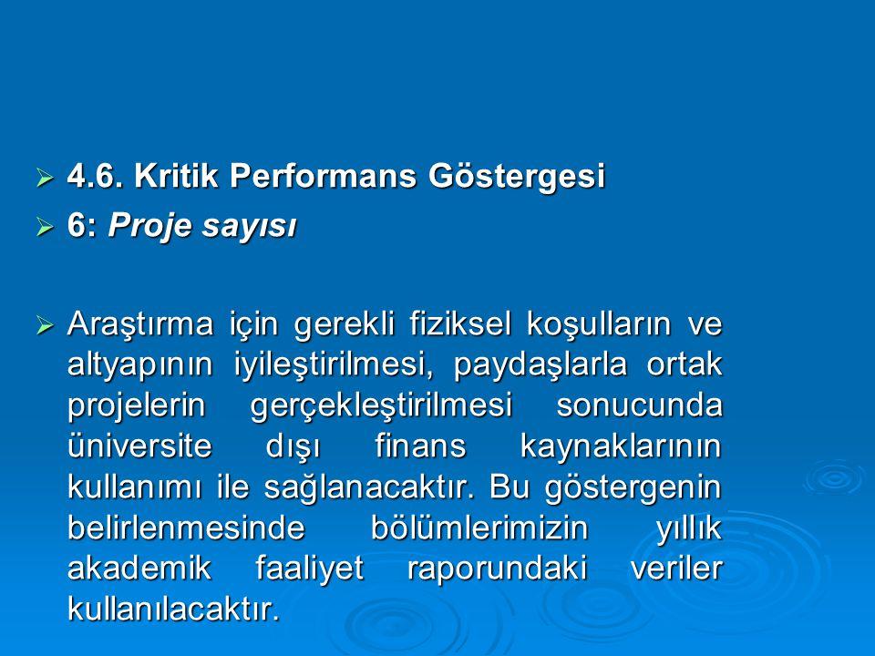 4.6. Kritik Performans Göstergesi
