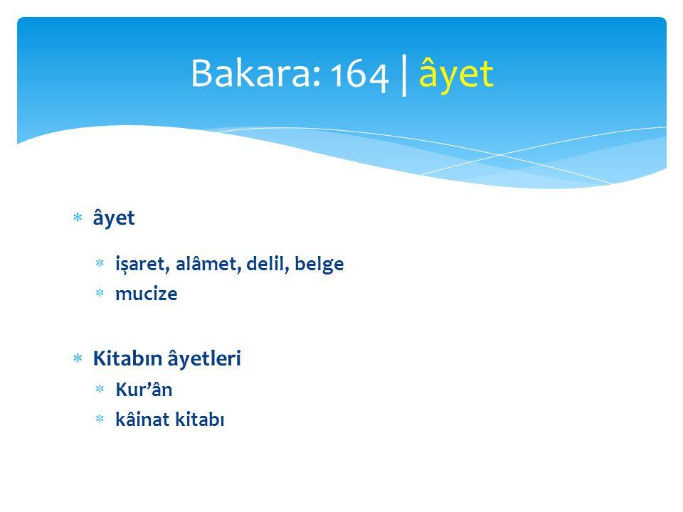 Bakara: 164 | âyet âyet Kitabın âyetleri işaret, alâmet, delil, belge