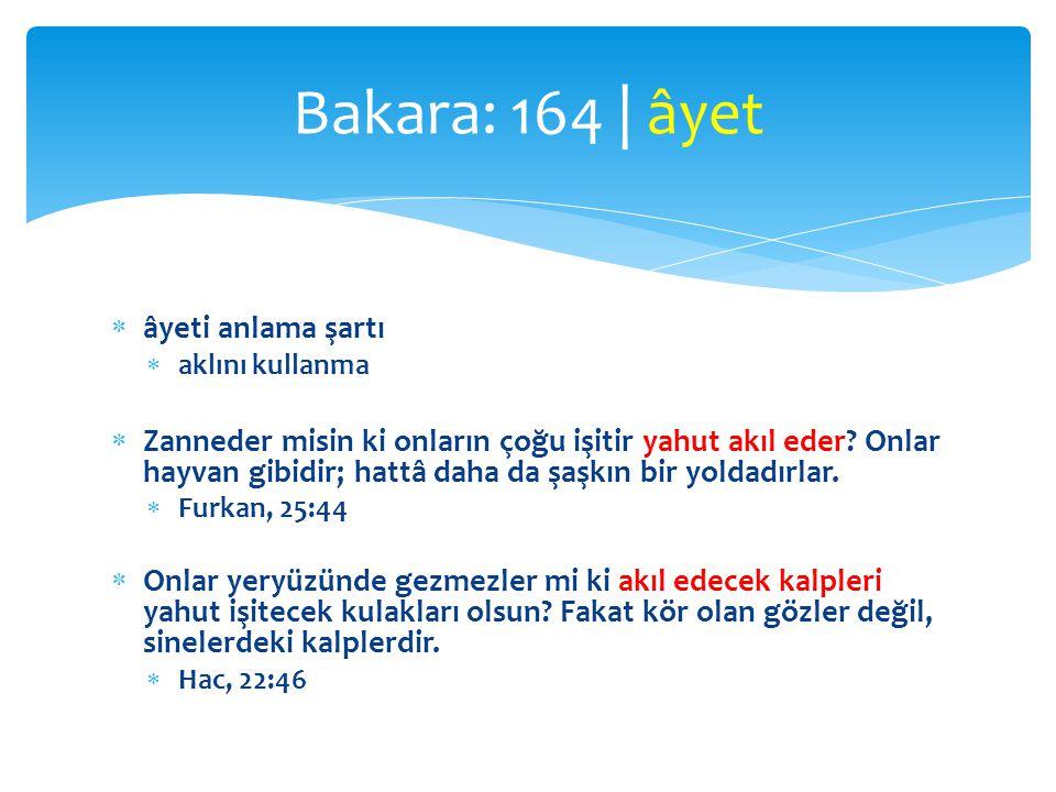 Bakara: 164 | âyet âyeti anlama şartı