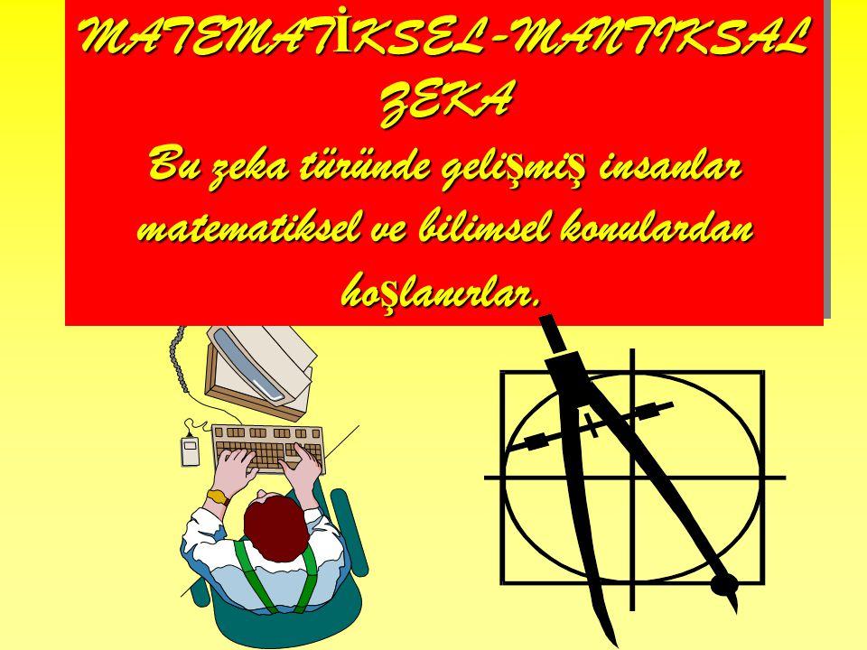 MATEMATİKSEL-MANTIKSAL ZEKA