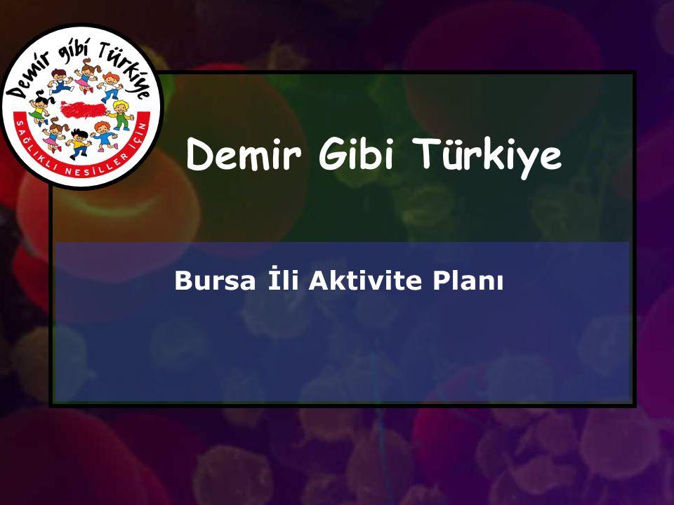 Bursa İli Aktivite Planı