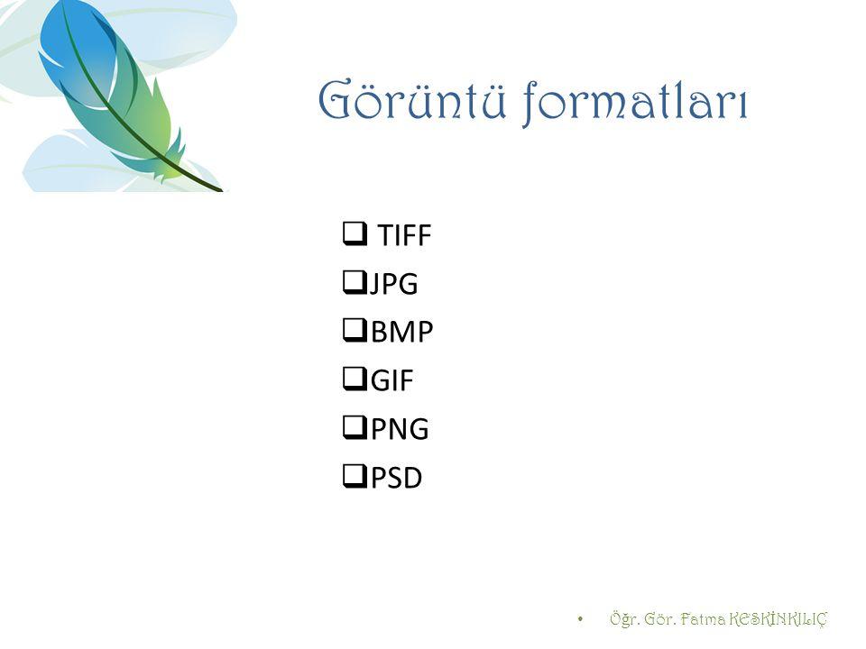 Görüntü formatları TIFF JPG BMP GIF PNG PSD