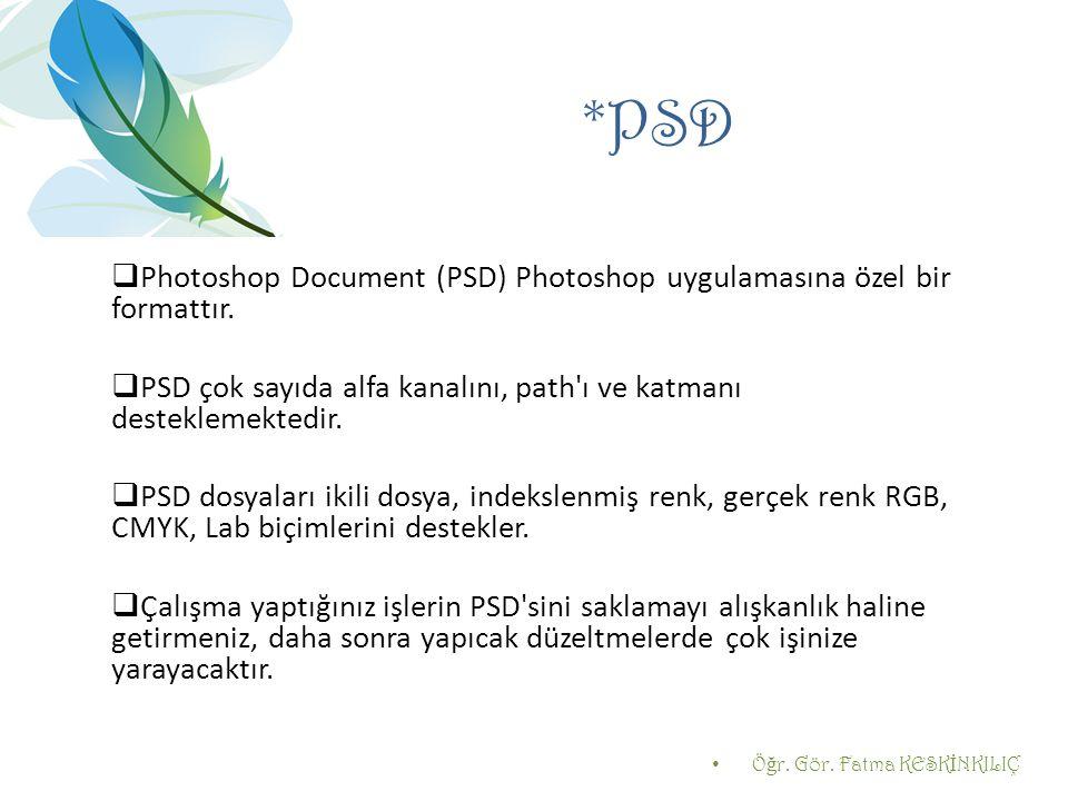 *PSD Photoshop Document (PSD) Photoshop uygulamasına özel bir formattır. PSD çok sayıda alfa kanalını, path ı ve katmanı desteklemektedir.