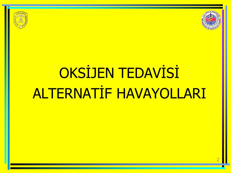 ALTERNATİF HAVAYOLLARI