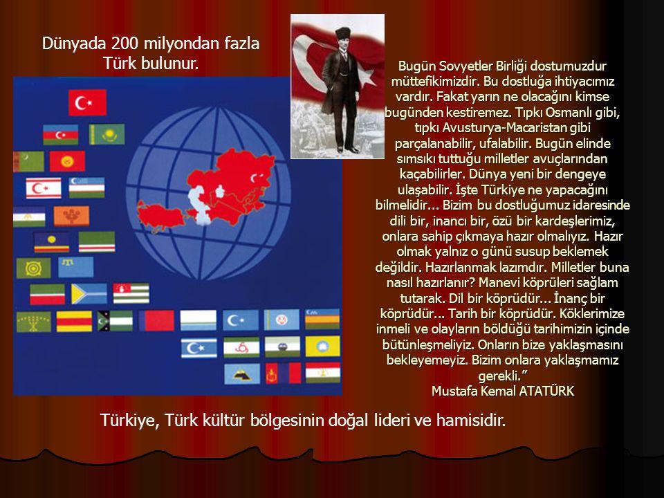 Dünyada 200 milyondan fazla Türk bulunur.