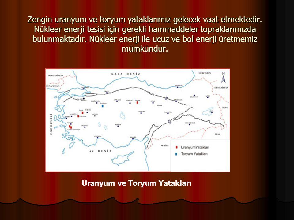 Uranyum ve Toryum Yatakları