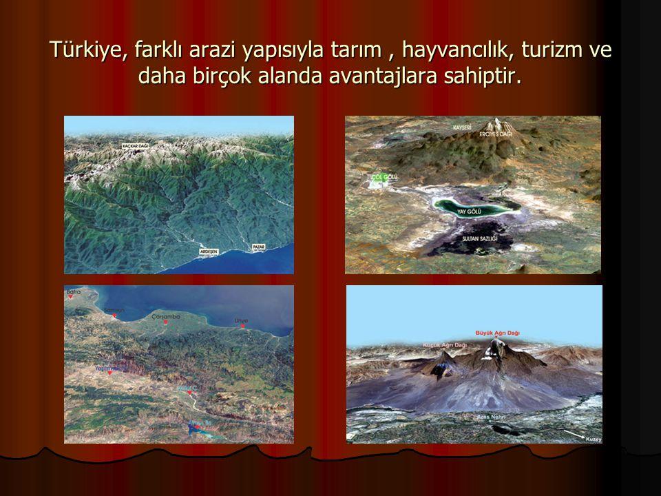 Türkiye, farklı arazi yapısıyla tarım , hayvancılık, turizm ve daha birçok alanda avantajlara sahiptir.