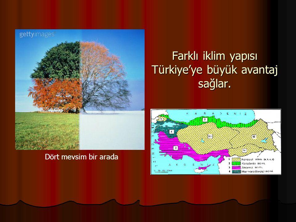 Farklı iklim yapısı Türkiye'ye büyük avantaj sağlar.