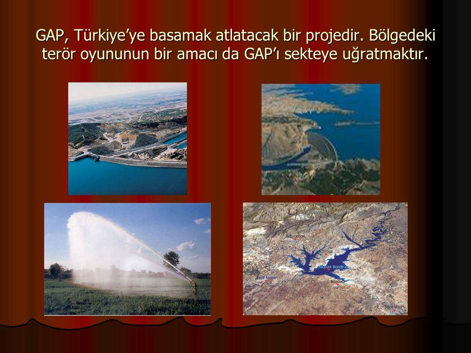GAP, Türkiye'ye basamak atlatacak bir projedir