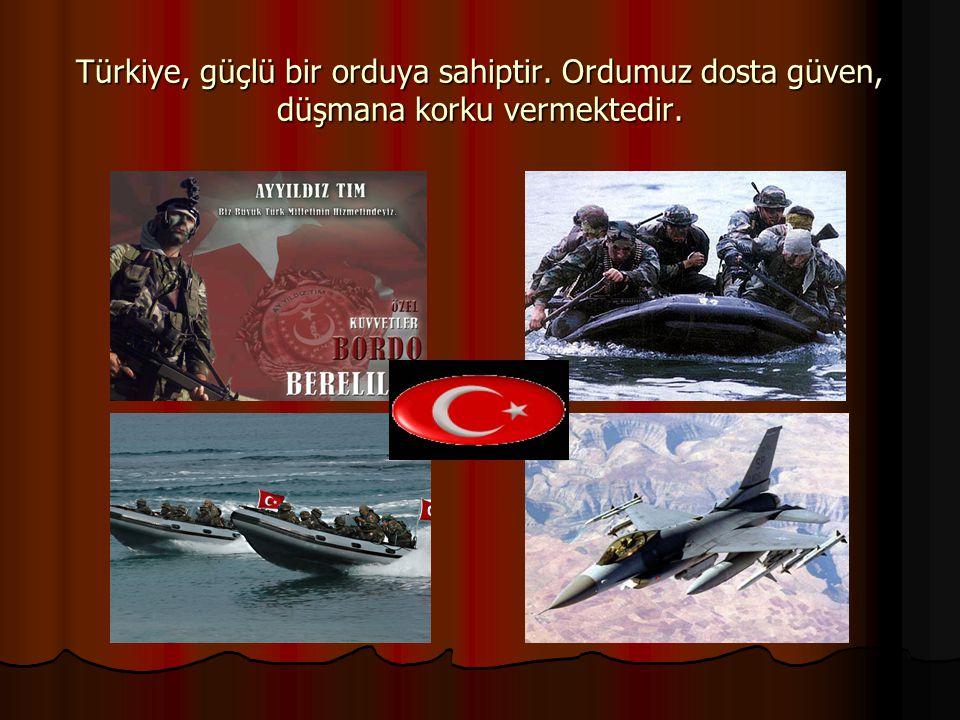 Türkiye, güçlü bir orduya sahiptir