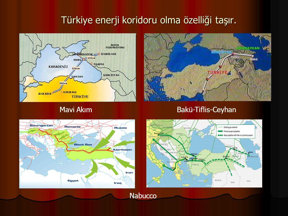 Türkiye enerji koridoru olma özelliği taşır.
