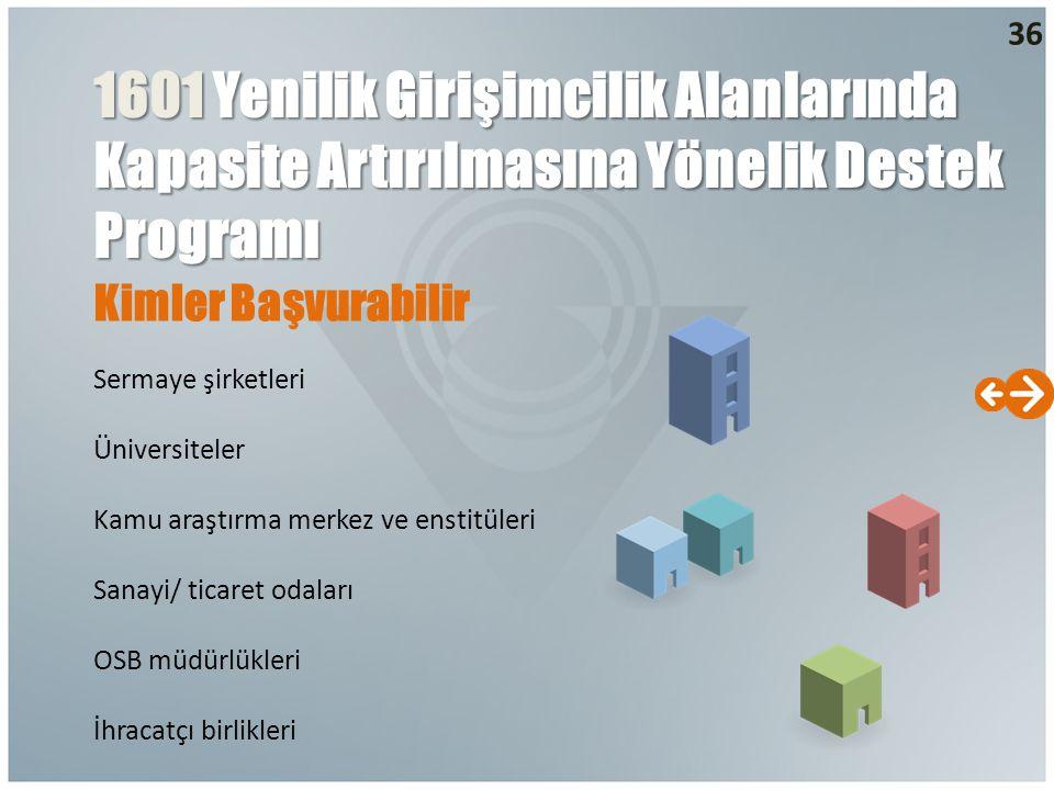 1601 Yenilik Girişimcilik Alanlarında Kapasite Artırılmasına Yönelik Destek Programı