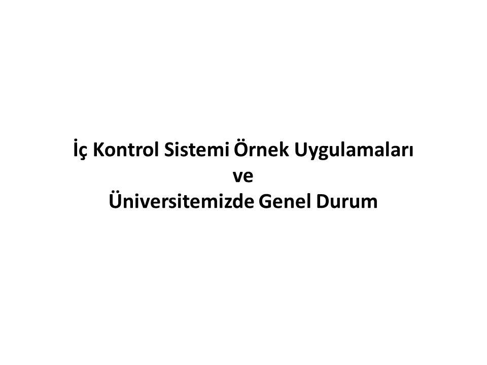 İç Kontrol Sistemi Örnek Uygulamaları ve Üniversitemizde Genel Durum