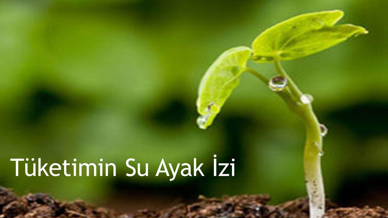 Ülke içerisinde tüketilen mal ve hizmetlerin üretimi için kullanılan toplam su (yeşil, mavi ve gri) miktarıdır. Türkiye'de tüketimin su ayak izi büyük oranda ülke içindeki su kaynaklarının kullanımına dayanmaktadır.
