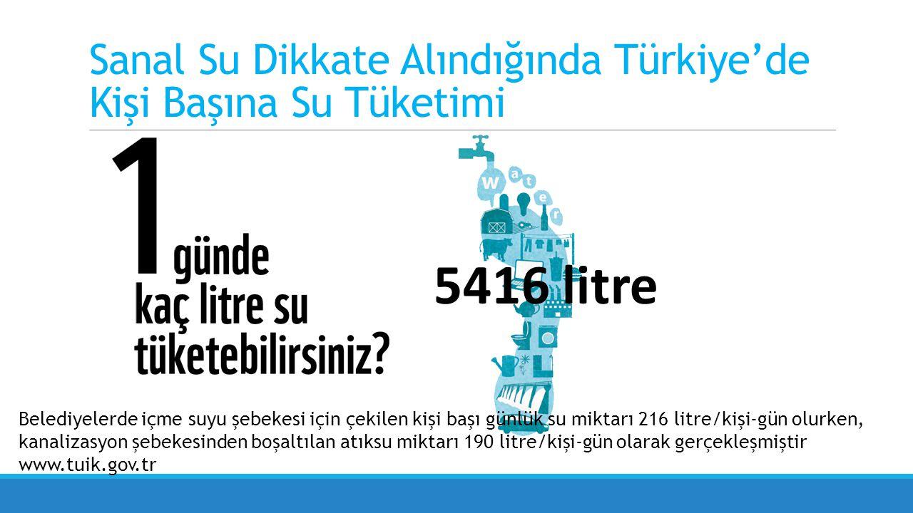Sanal Su Dikkate Alındığında Türkiye'de Kişi Başına Su Tüketimi