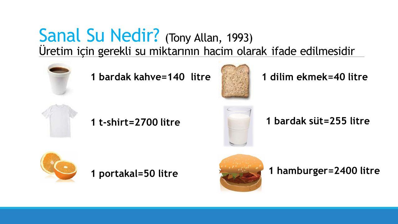 Sanal Su Nedir (Tony Allan, 1993) Üretim için gerekli su miktarının hacim olarak ifade edilmesidir