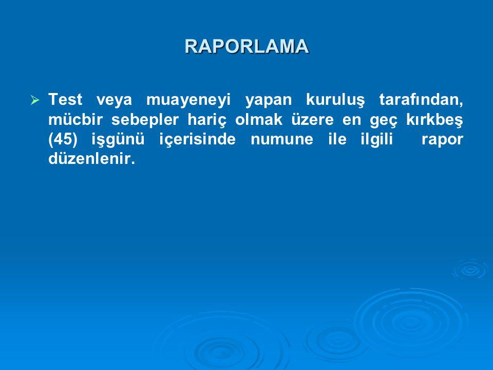 RAPORLAMA