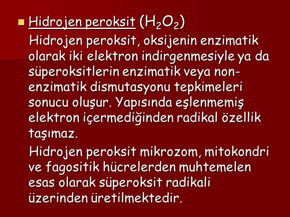 Hidrojen peroksit (H2O2)