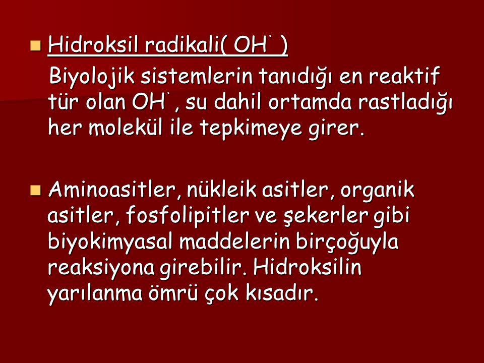 Hidroksil radikali( OH˙ )