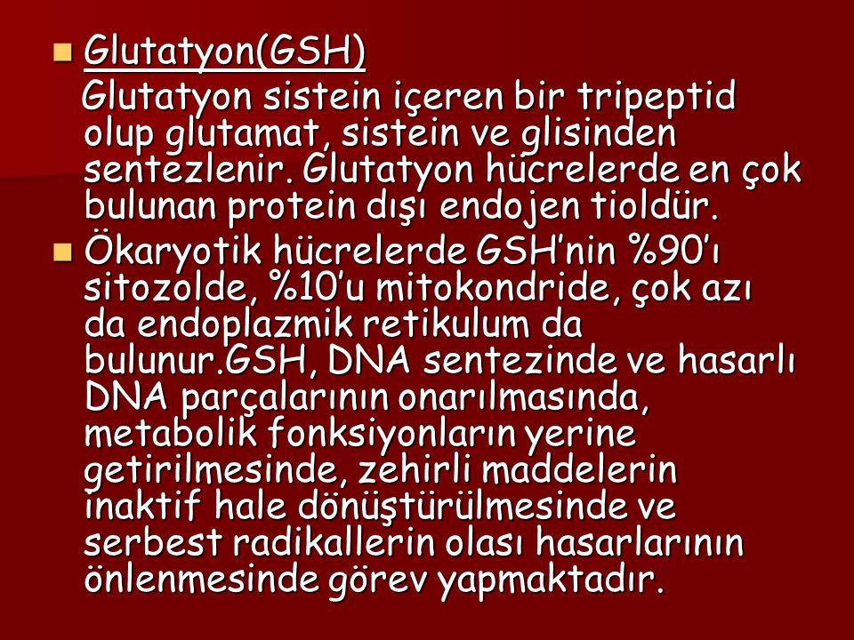 Glutatyon(GSH)