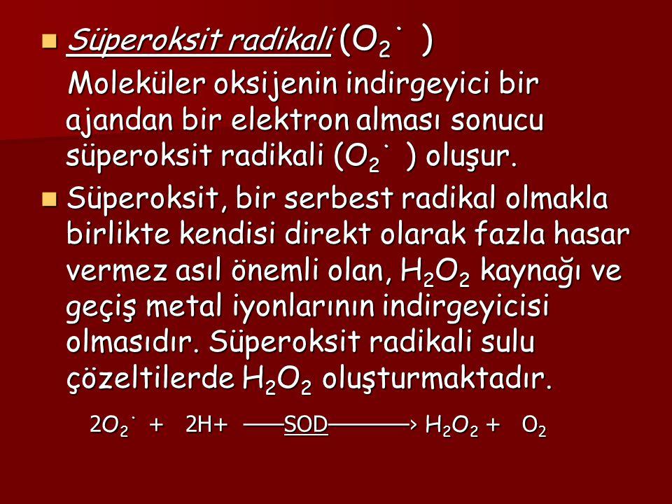 Süperoksit radikali (O2˙ )