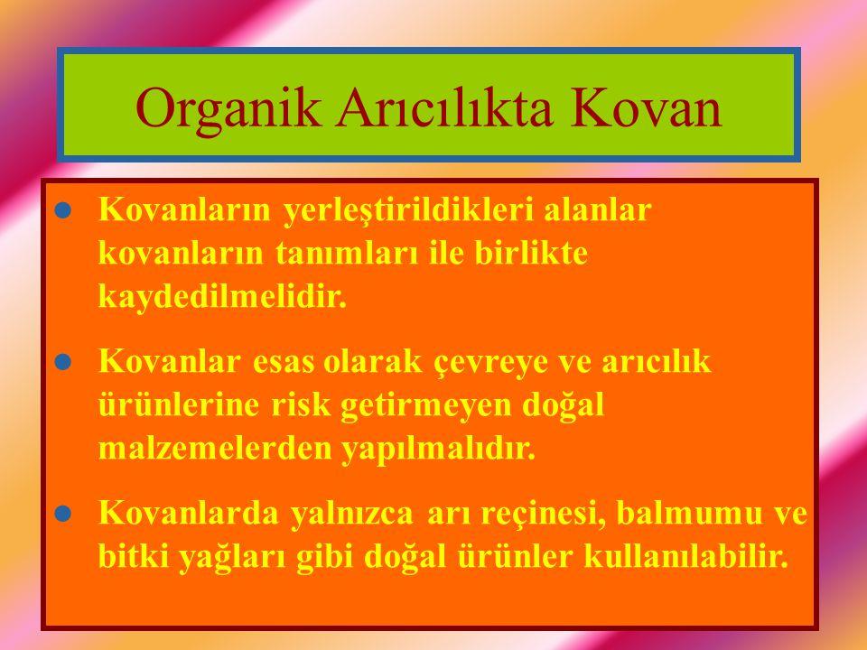 Organik Arıcılıkta Kovan