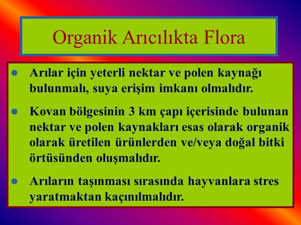 Organik Arıcılıkta Flora