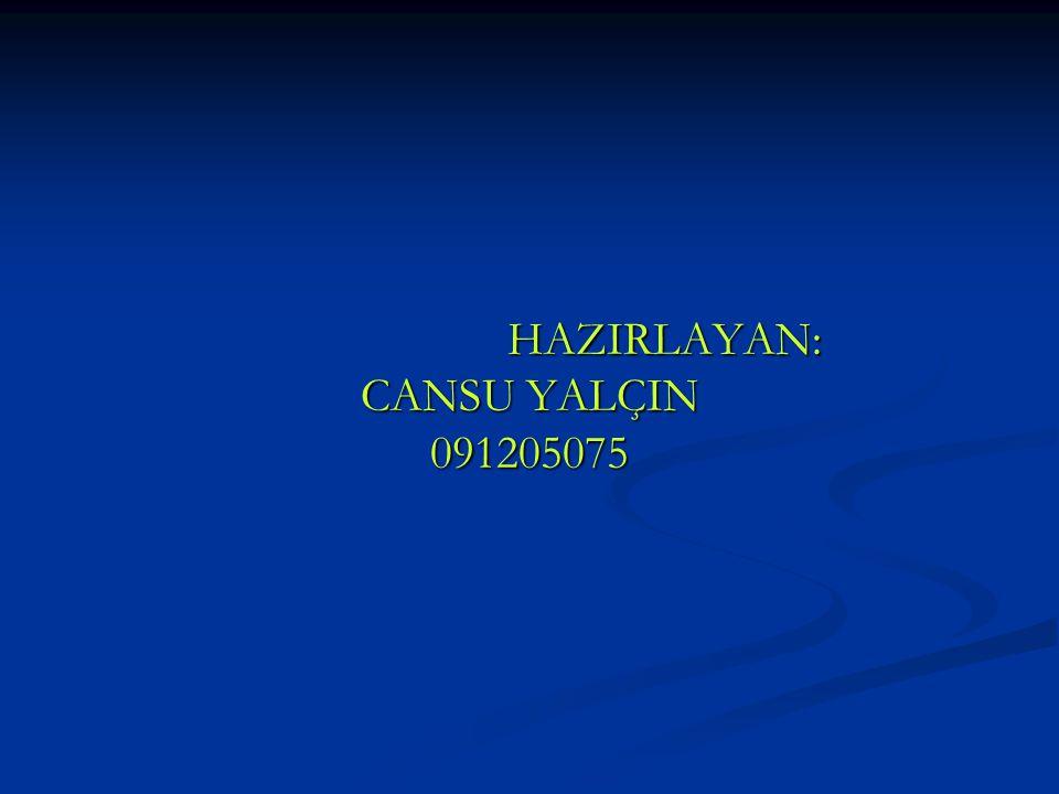 HAZIRLAYAN: CANSU YALÇIN 091205075