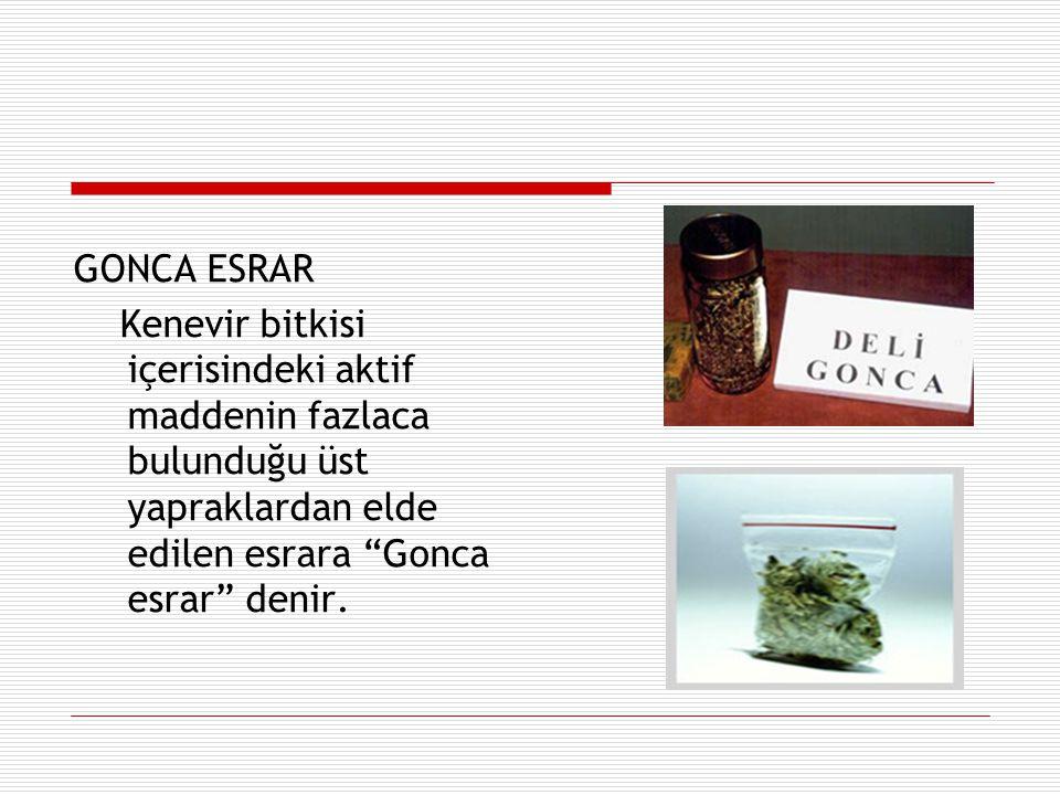 GONCA ESRAR Kenevir bitkisi içerisindeki aktif maddenin fazlaca bulunduğu üst yapraklardan elde edilen esrara Gonca esrar denir.