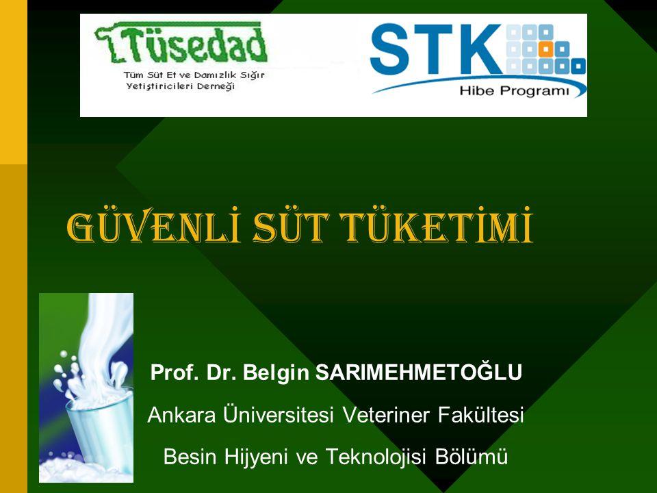 Prof. Dr. Belgin SARIMEHMETOĞLU
