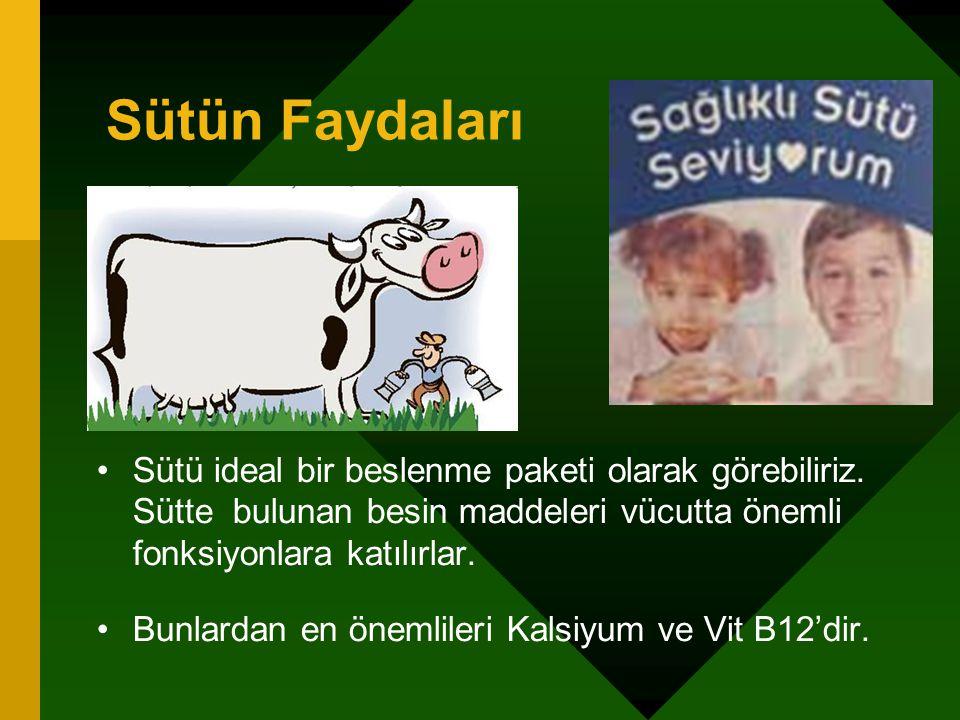 Sütün Faydaları Sütü ideal bir beslenme paketi olarak görebiliriz. Sütte bulunan besin maddeleri vücutta önemli fonksiyonlara katılırlar.