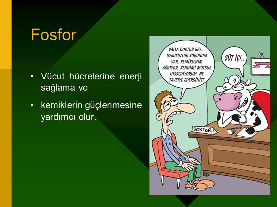 Fosfor Vücut hücrelerine enerji sağlama ve