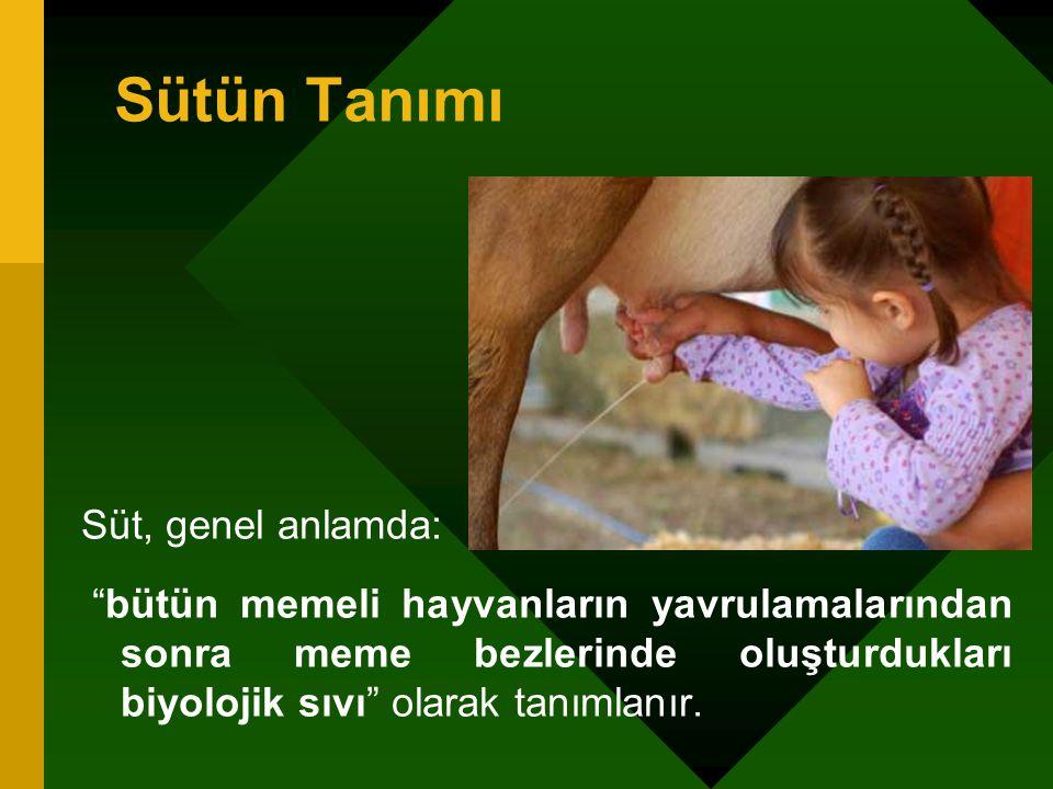 Sütün Tanımı Süt, genel anlamda: