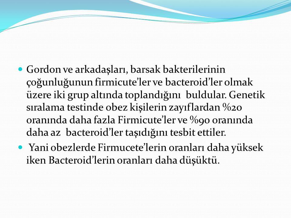 Gordon ve arkadaşları, barsak bakterilerinin çoğunluğunun firmicute'ler ve bacteroid'ler olmak üzere iki grup altında toplandığını buldular. Genetik sıralama testinde obez kişilerin zayıflardan %20 oranında daha fazla Firmicute'ler ve %90 oranında daha az bacteroid'ler taşıdığını tesbit ettiler.