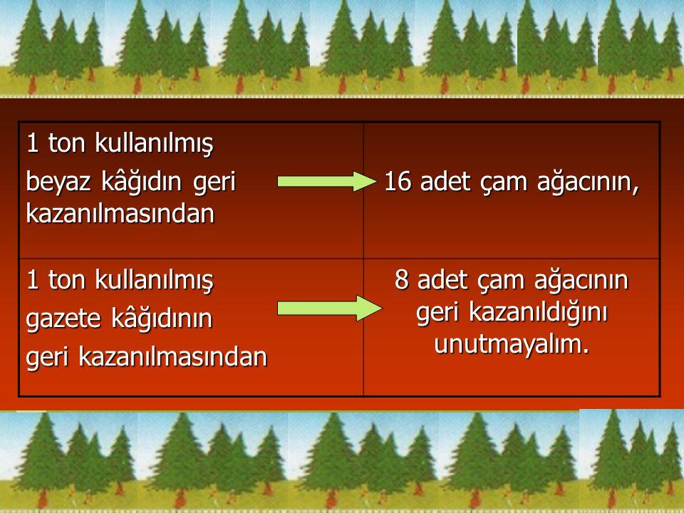 8 adet çam ağacının geri kazanıldığını unutmayalım.