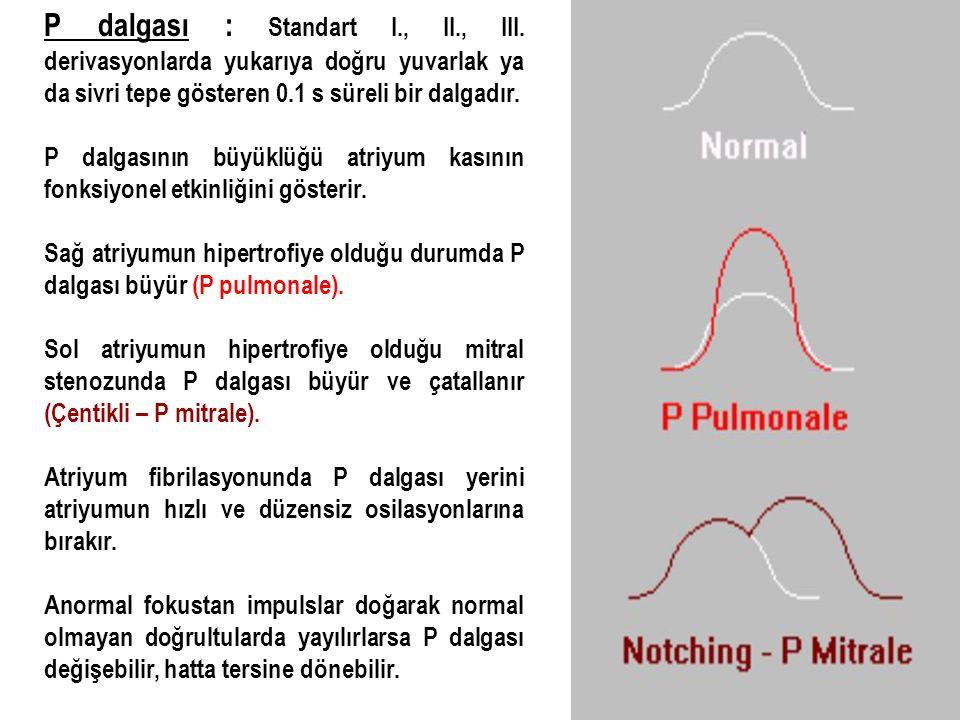 P dalgası : Standart I. , II. , III
