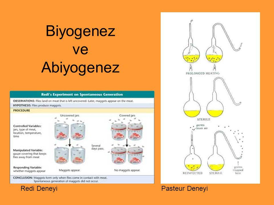 Biyogenez ve Abiyogenez
